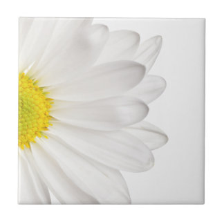 White Daisy Flower Background Customized Daisies Tile