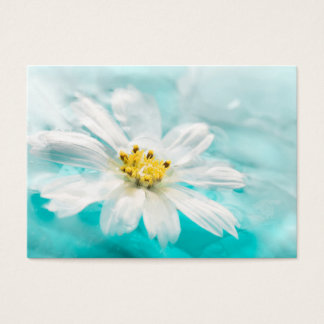 White Daisy Flower Blue Water Pond Tropical Business Card