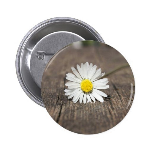 White Daisy Flower Buttons