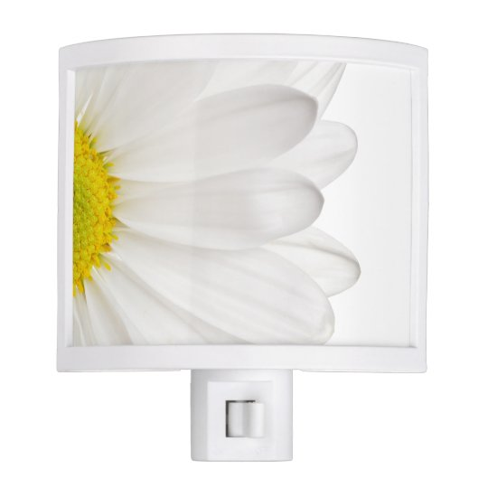 White Daisy Flower Floral Daisies Flowers Night Lights