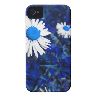 White daisy flowers on blue . Tuscany, Italy iPhone 4 Covers