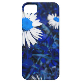 White daisy flowers on blue . Tuscany, Italy iPhone 5 Covers