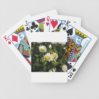 White daisy flowers on green background bicycle playing cards