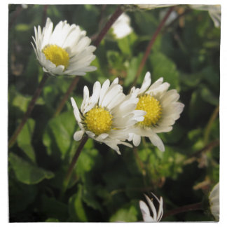 White daisy flowers on green background napkin