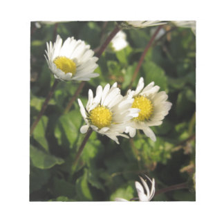 White daisy flowers on green background notepads