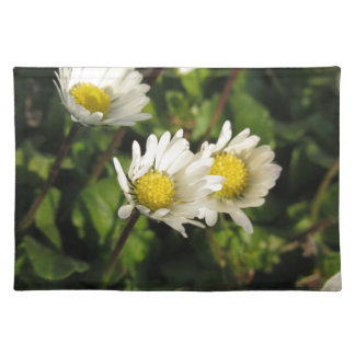 White daisy flowers on green background placemat