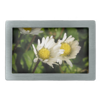 White daisy flowers on green background rectangular belt buckle