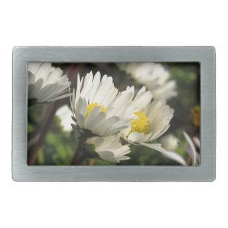White daisy flowers on green background rectangular belt buckle