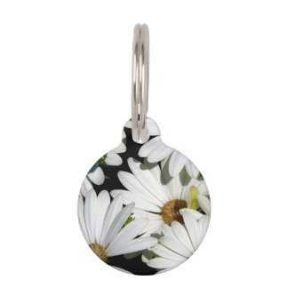 White Daisy Flowers Pet Tag