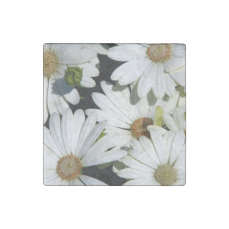 White Daisy Flowers Stone Magnets
