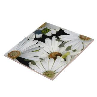 White Daisy Flowers Tile