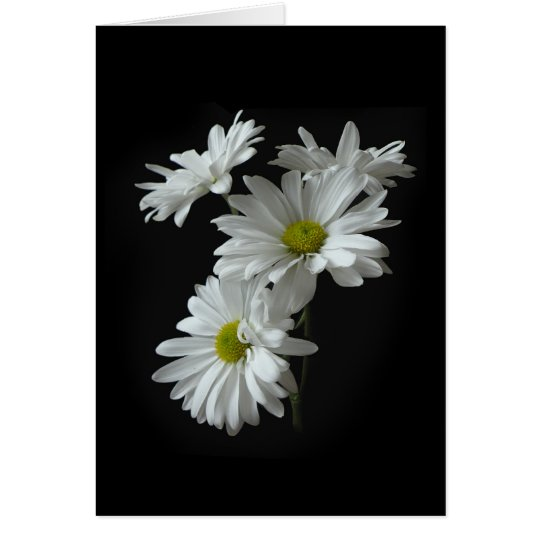 White Daisy Mums Note Card