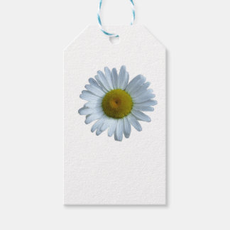 White Daisy Pack Of Gift Tags