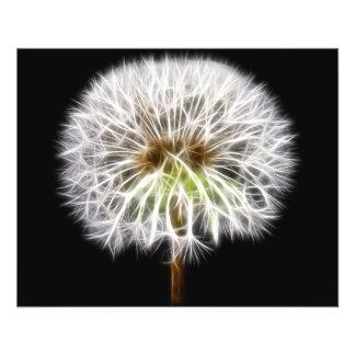 White Dandelion Flower Plant Custom Flyer