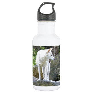 White Dingo 532 Ml Water Bottle