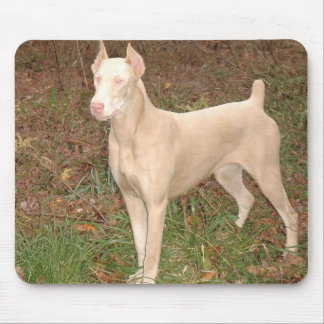 white doberman mouse pad