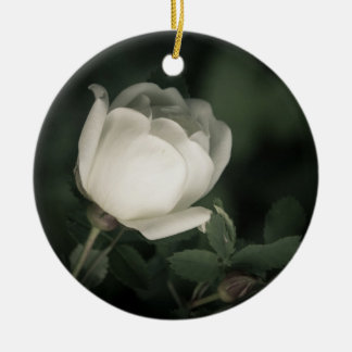 White Dogrose on a Dark Background. Add Your  Name Ceramic Ornament