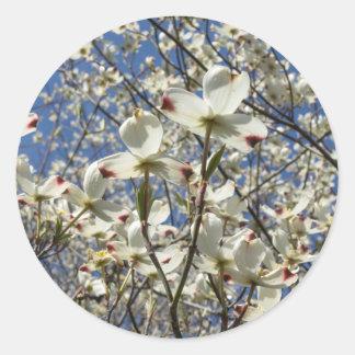 White Dogwood Tree Flowers Stickers