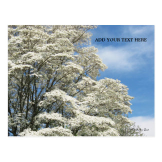 White Dogwood Tree Postcard - Add Your Own Text
