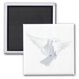 White Dove in Flight Image Magnet