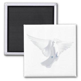 White Dove in Flight Image Square Magnet