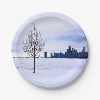 White dream - winter in Chicago, paper plates