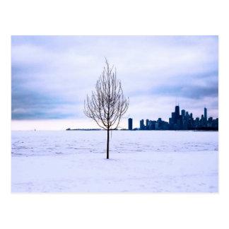 White dream - winter in Chicago, postcard