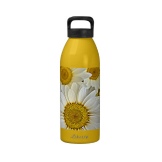 White Dreamy Daisy Flowers Blossom Drinking Bottles