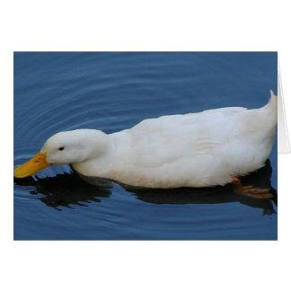 White Duck Card