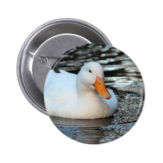 White Duck swimming in a creek 2 Inch Round Button