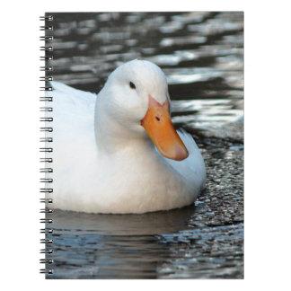 White Duck swimming in a creek Note Books
