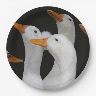 White Ducks Photo Paper Plate