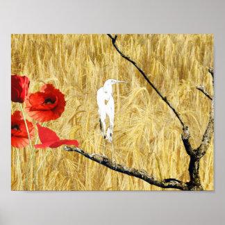 white egret and poppies.jpg poster