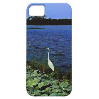 White Egret On Rocky Shore Line iPhone 5 Cases