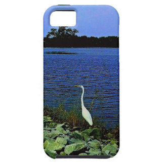 White Egret On Rocky Shore Line iPhone 5 Covers