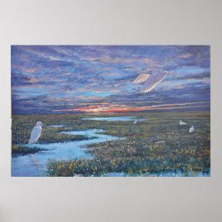 White Egrets, sunrise. Poster