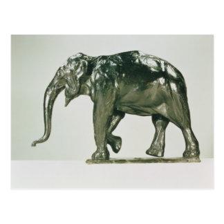 White Elephant Postcard