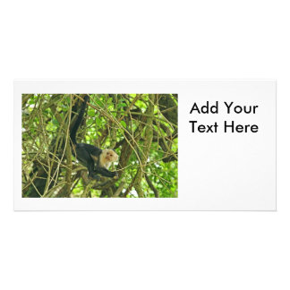 White Faced Monkey in Jungle Photo Card Template