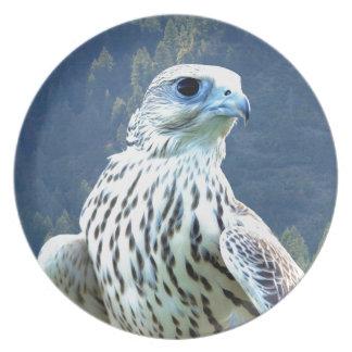 White falcon plate