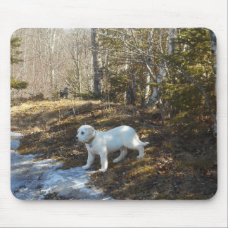 White Farm Dog Puppy Mouse Pad