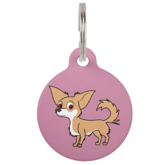 White & Fawn Chihuahua with Long Hair Pet Name Tag