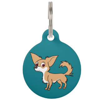 White & Fawn Chihuahua with Long Hair Pet Nametags