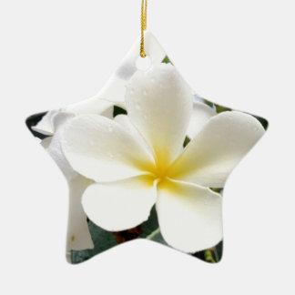 White Floral Ceramic Star Ornament