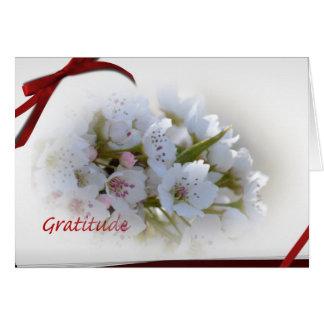 White Floral Gratitude Notes