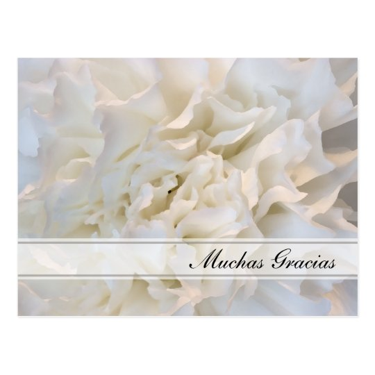 White Floral Spanish Thank You Postcard