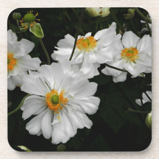 White Flower Coaster