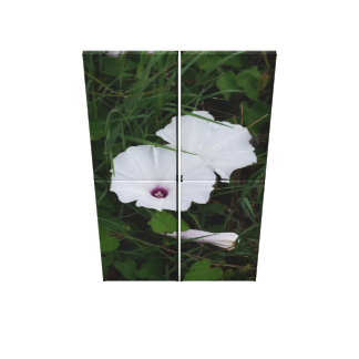 White Flower Four Panel Print