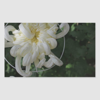 White Flower Garden Sticker
