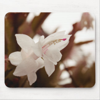 White Flower Mouse Pad