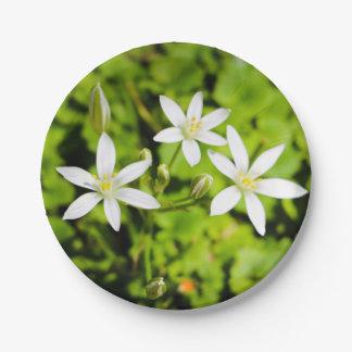 White Flower Paper Plate